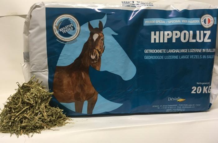 Hippoluz
